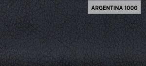 ARGENTINA 1000