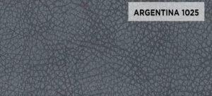 ARGENTINA 1025