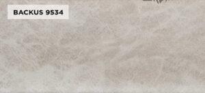 BACKUS 9534