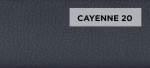 Cayenne 20