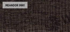 MEANDOR 9881