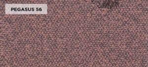 PEGASUS 56